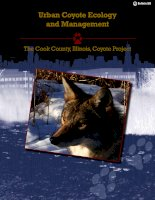 Urban Coyote Ecology and Management - The Cook County, Illinois, Coyote Project potx