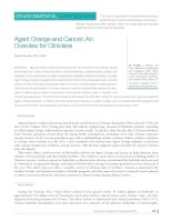 Agent Orange and Cancer: An Overview for Clinicians doc