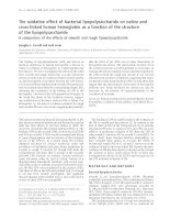 Báo cáo khoa học: The oxidative effect of bacterial lipopolysaccharide on native and cross-linked human hemoglobin as a function of the structure of the lipopolysaccharide A comparison of the effects of smooth and rough lipopolysaccharide ppt