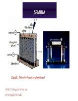 Điện di trên polyacrylamide gel