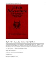 High Adventure A Narrative of Air Fighting in France potx