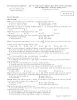 Đề thi - Đáp án môn Sinh học - Tốt nghiệp THPT Giáo dục thường xuyên ( 2013 ) Mã đề 329 ppt