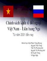 Chính sách kinh tế đối ngoại Việt Nam – Liên bang Nga potx