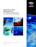 Rethinking Risk Management in Financial Services Practices from other domains potx