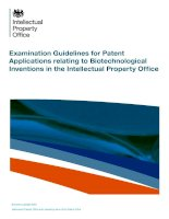 Examination Guidelines for Patent Applications relating to Biotechnological Inventions in the Intellectual Property Office