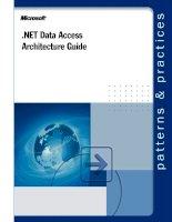 NET Data Access Architecture Guide potx