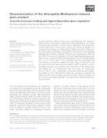 Báo cáo khoa học: Characterization of the Drosophila Methoprene -tolerant gene product Juvenile hormone binding and ligand-dependent gene regulation potx
