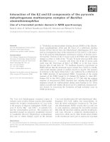 Báo cáo khoa học: Interaction of the E2 and E3 components of the pyruvate dehydrogenase multienzyme complex of Bacillus stearothermophilus ppt