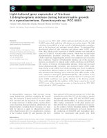 Báo cáo khoa học: Light-induced gene expression of fructose 1,6-bisphosphate aldolase during heterotrophic growth in a cyanobacterium, Synechocystis sp. PCC 6803 ppt