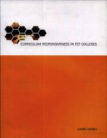 curriculum responsiveness in further education and training colleges pdf