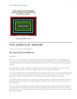 FIVE JEWELS OF WISDOM doc