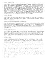 Vài nét về Nguyễn Khuyến - văn mẫu