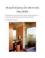 Bí quyết để phòng tắm nhỏ trở nên rộng rãi hơn pot
