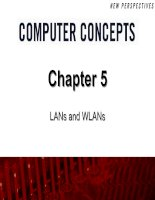 Chapter 5: LANs and WLANs pptx