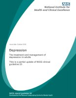 Depression - The treatment and management of depression in adults potx