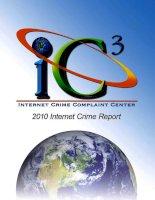 IC3 INTERNET CRIME COMPLAINT CENTER: 2010 INTERNET CRIME REPORT potx
