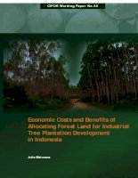 Economic Costs and Benefits of Allocating Forest Land for Industrial Tree Plantation Development in Indonesia pdf