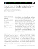 Báo cáo khoa học: Effect of the -Gly-3(S)-hydroxyprolyl-4(R)-hydroxyprolyltripeptide unit on the stability of collagen model peptides ppt
