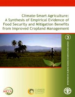 Climate-Smart Agriculture: A Synthesis of Empirical Evidence of Food Security and Mitigation Benefits from Improved Cropland Management docx