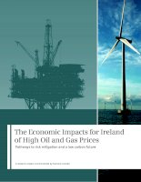 The Economic Impacts for Ireland of High Oil and Gas Prices doc