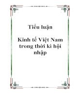 Tiểu luận Kinh tế Việt Nam trong thời kì hội nhập pot