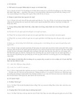 Tổng kết về từ vựng (tiếp theo) - văn mẫu