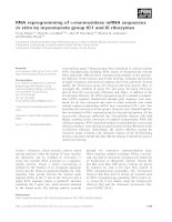 Báo cáo khoa học: RNA reprogramming of a-mannosidase mRNA sequences in vitro by myxomycete group IC1 and IE ribozymes pptx