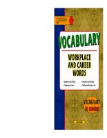 VOCABULARY WORKPLACE AND CAREER WORDS ppt