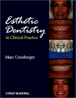 ESTHETIC DENTISTRY IN CLINICAL PRACTICE ppt