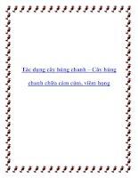 Tác dụng cây húng chanh – Cây húng chanh chữa cảm cúm, viêm họng pot