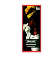 High-level consultation to accelerate progress towards achieving maternal and child health Millenium Development Goals (MDGs) 4 and 5 in South-East Asia pot