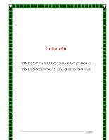 Luận văn: TÍN DỤNG VÀ RỦI RO TRONG HOẠT ĐỘNG TÍN DỤNG CỦA NGÂN HÀNG THƯƠNG MẠI docx