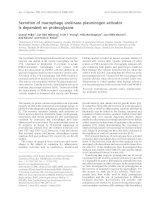 Báo cáo khoa học: Secretion of macrophage urokinase plasminogen activator is dependent on proteoglycans potx
