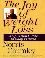The Joy of Weight Loss: A Spiritual Guide to Easy Fitness doc