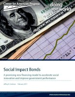 Social Impact Bonds - A promising new financing model to accelerate social innovation and improve government performance pot