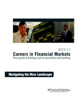CAREERS IN FINANCIAL MARKETS - YOUR GUIDE TO FINDING A JOB IN SECURITIES AND BANKING 2010-11: Navigating the New Landscape docx
