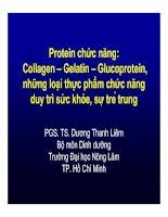 Protein chức năng: Collagen – Gelatin – Glucoprotein, những loại thực phẩm chức năng duy trì sức khỏe, sự trẻ trung - PGS.TS. Dương Thanh Liêm doc