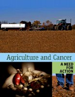 Agriculture and Cancer: a need for action docx