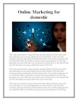 Online Marketing for domestic docx
