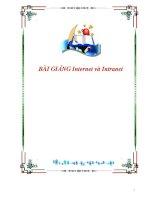 BÀI GIẢNG Internet và Intranet ppt