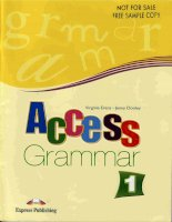 access grammar book 1