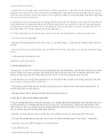 Luyện tập đưa các yếu tố tự sự và miêu tả vào bài văn nghị luận - văn mẫu