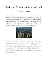 Lời khuyên cho những người mới đầu tư BĐS pot