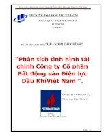 """Đề tài """"Phân tích tình hình tài chính Công ty Cổ phần Bất động sản Điện lực Dầu Khí Việt Nam PVL"""" pdf"""