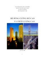 BÊ TÔNG CƯỜNG ĐỘ CAO VÀ CHẤT LƯỢNG CAO pdf