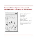 Recommended code of practice for the care and handling of poultry from hatchery to processing plant ppt