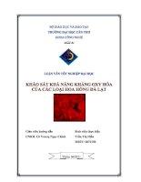 khảo sát khả năng kháng oxi hóa của các loại hoa hồng đà lạt