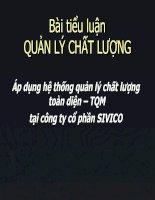 Áp dụng hệ thống quản lý chất lượng toàn diện – TQM tại công ty cổ phần SIVICO pot