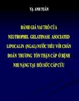 ĐÁNH GIÁ VAI TRÒ CỦA NEUTROPHIL GELATINASE ASOCIATED LIPOCALIN (NGAL) NƯỚC TIỂU VỚI CHẨN ĐOÁN THƯƠNG TỔN THẬN CẤP Ở BỆNH NHI NẶNG TẠI HỒI SỨC CẤP CỨU docx
