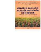 Hướng dẫn kế hoạch làm ăn xóa đói giảm nghèo bền vững cho hộ nông dân docx